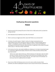 thumbnail of Small group discussion questions_Peace
